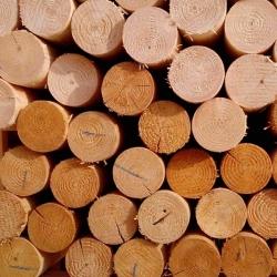 Dřevěný kůl, výška 150 cm, průměr 6 cm, s hrotem