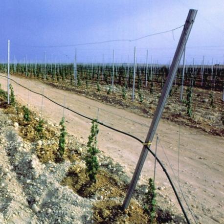 Vinohradnický sloupek koncový 50x42 mm, výška 270 cm